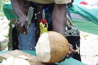 park360-jamaican-fruit-tasting