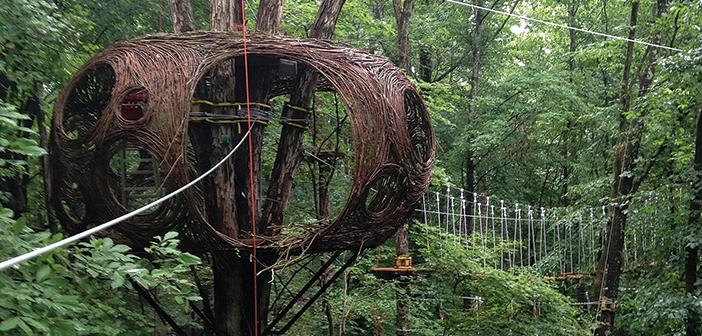 Bonsai Design Creation: A nest built into a zip line course at Ijams Nature Center, Ky.