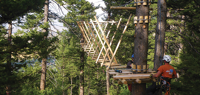Find the Right Builder : tree stand canopy - memphite.com