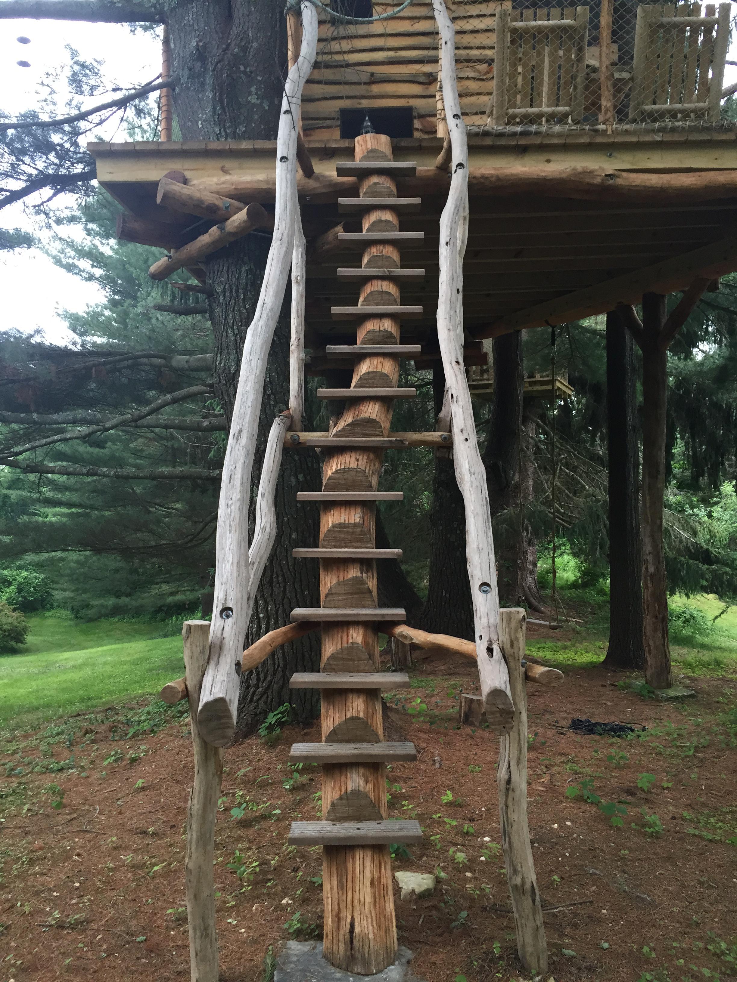 Tree-Mendous Black Locust Stairs